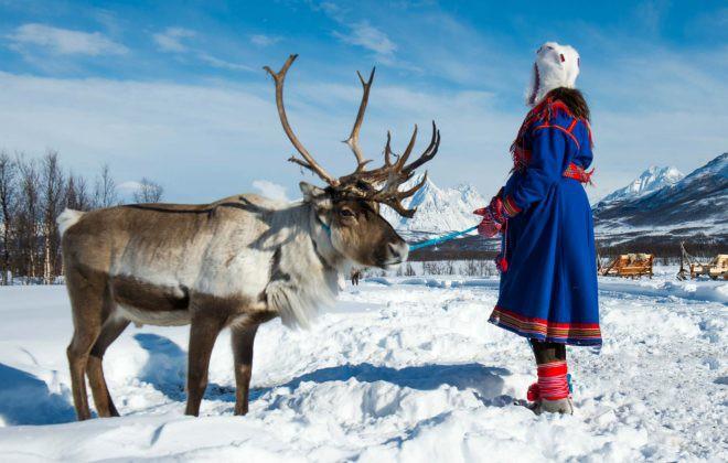 sami-reindeer-norway-shutterstock_1060031279-660x420