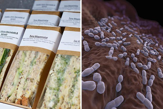 Nhiễm khuẩn Listeria - 1