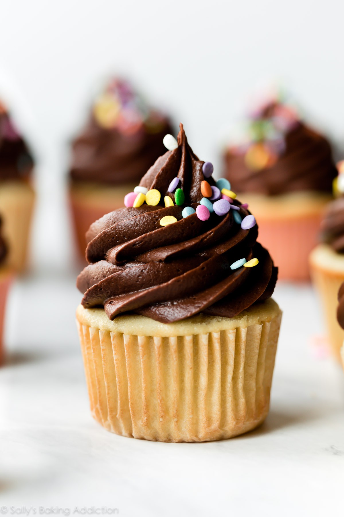 yellow-cupcakes-with-chocolate-frosting-sprinkles