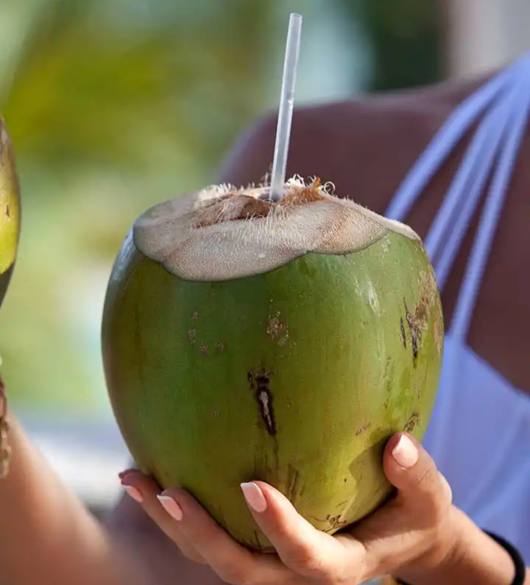 coconut-water-photo-credit-Pinterest