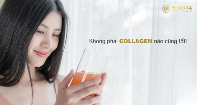 Collagen dạng uống – Có thực sự hiệu quả như lời đồn? - Ảnh 2.