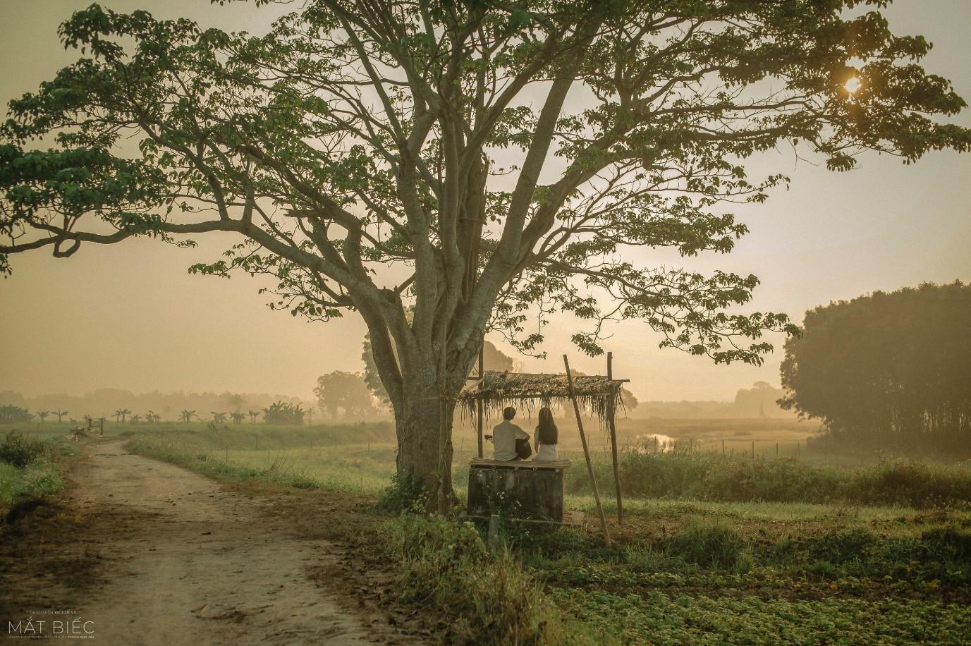 """""""Mắt Biếc"""" là phim Việt được mong chờ nhất 2019, fan đếm ngược từng ngày chỉ để chờ công bố... poster - Ảnh 4."""