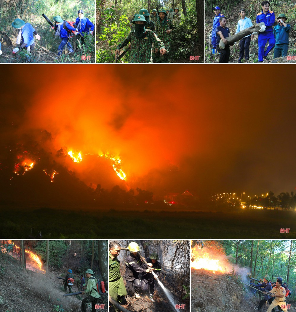 Toàn cảnh thảm họa cháy rừng ở Hà Tĩnh - Ảnh 2.