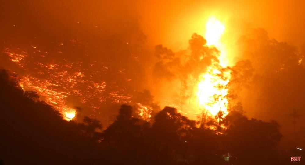 Toàn cảnh thảm họa cháy rừng ở Hà Tĩnh - Ảnh 6.