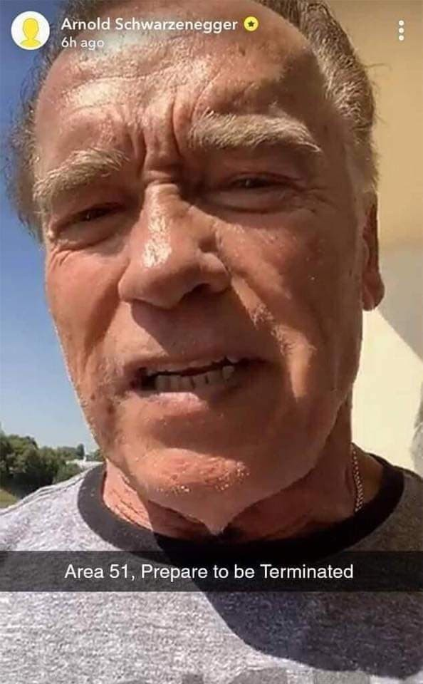 celebrities-going-to-area-51-meme-003-arnold-will-terminate-them-alien-cheeks