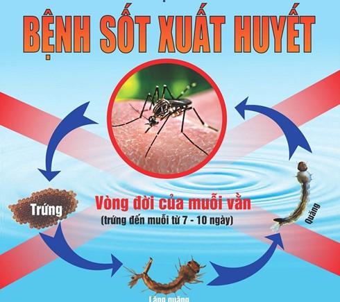 Chuyên gia nhấn mạnh 10 lưu ý trong chăm sóc bệnh nhi sốt xuất huyết - Ảnh 1.