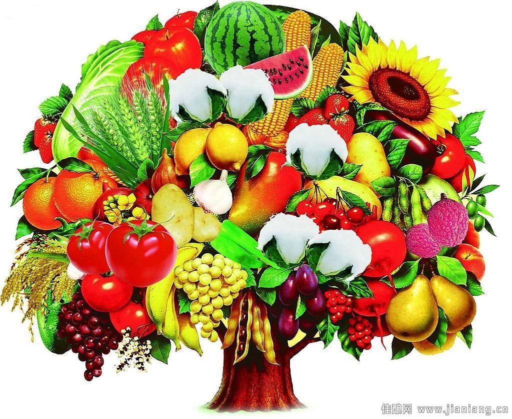 """6 nguyên tắc """"vàng"""" đế có một chế độ ăn lành mạnh tốt cho sức khoẻ - Ảnh 2."""
