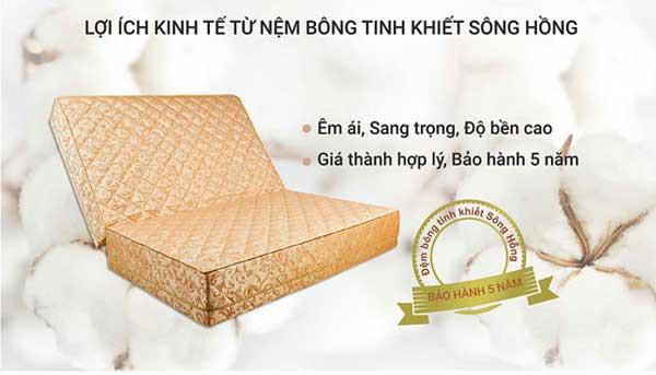 Đệm bông ép Sông Hồng siêu nảy - lựa chọn hàng đầu của người tiêu dùng Việt - Ảnh 3.