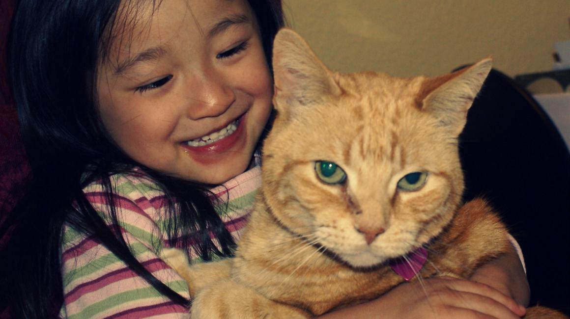 """Nuôi chó mèo cũng là 1 cách giảm cân và chống ung thư, tin cực vui cho """"kiếp làm sen"""" đây rồi! - Ảnh 4."""