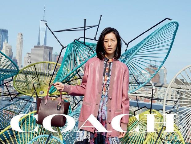 Sau Versace, lại đến Coach dính phốt tại Trung Quốc: Liu Wen lo sốt vó, fan Quan Hiểu Đồng lại mừng húm - Ảnh 4.