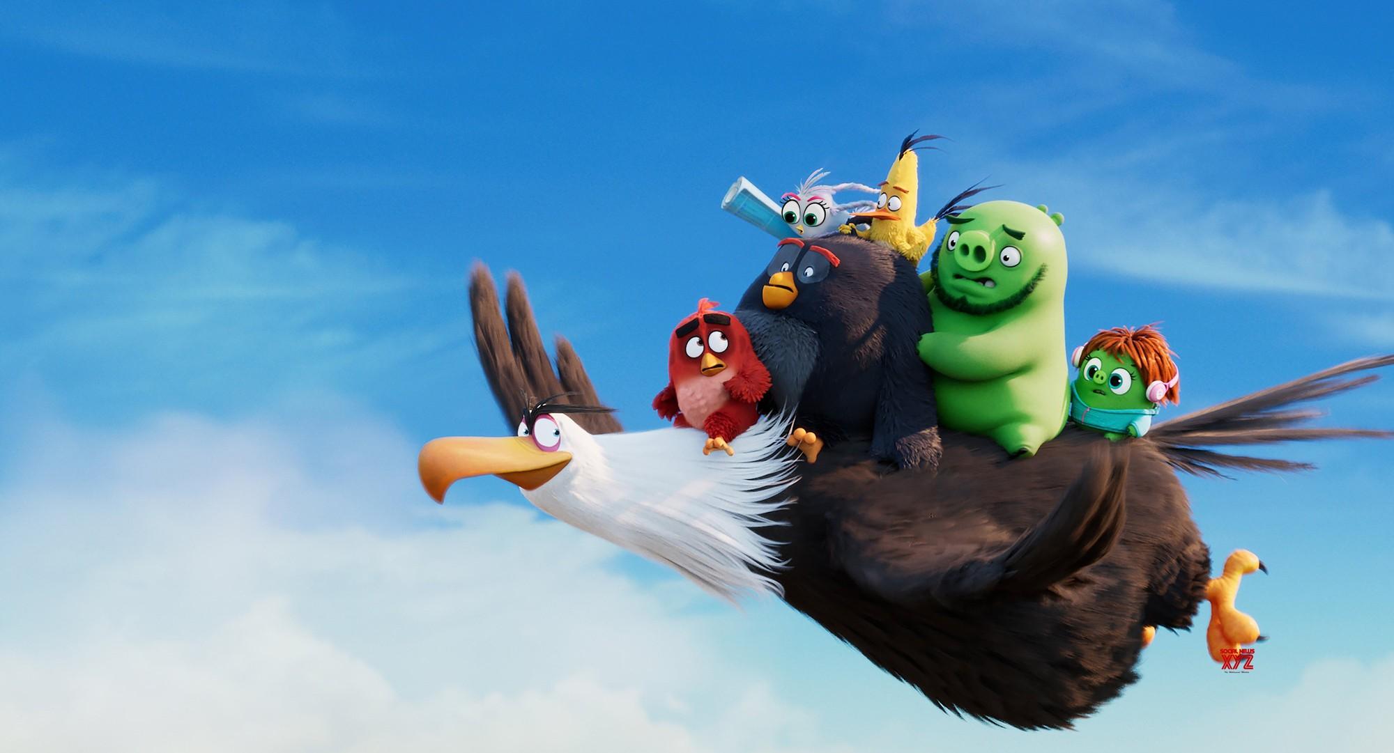 """Thái Hòa chia sẻ lý do lồng tiếng """"Angry Birds 2"""" gây xúc động - Ảnh 2."""
