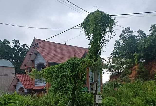 1 phút 9 lần mất điện, hàng trăm hộ dân ở Thanh Hóa bị cháy tivi, tủ lạnh - Ảnh 3.