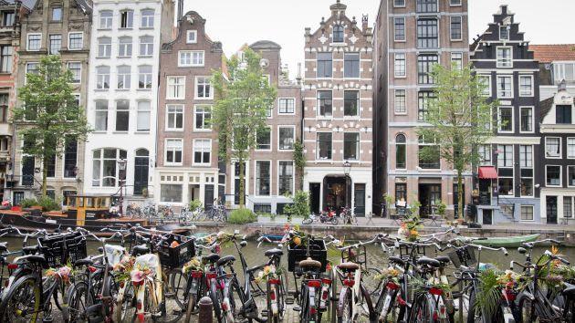 6 phương pháp nuôi dạy trẻ hạnh phúc của người Hà Lan - Ảnh 5.