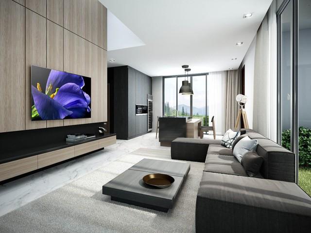 Vì sao nên chọn Sony OLED TV cho phòng khách hiện đại? - Ảnh 2.