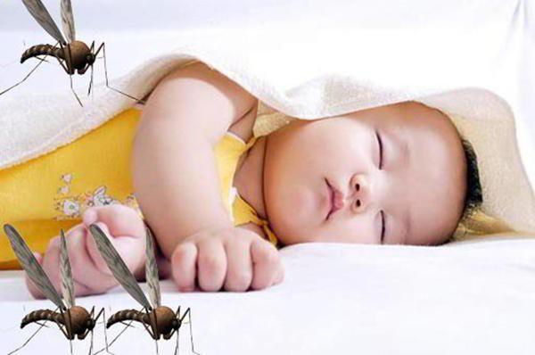 Sốt xuất huyết đang vào mùa, mẹ bầu và trẻ nhỏ nên đặc biệt cẩn trọng - Ảnh 2.