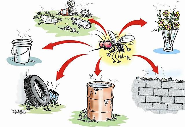 """Remos đẩy mạnh chiến dịch """"bảo vệ gia đình khỏi mọi vấn đề do muỗi"""" tại nhiều tỉnh thành - Ảnh 2."""
