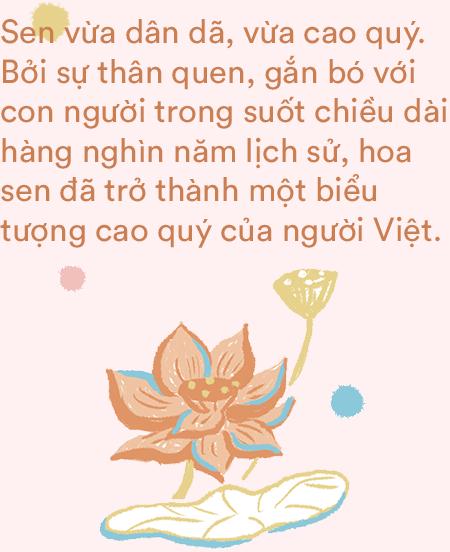 Có hình ảnh nào đặc biệt như hoa sen: Tột cùng dung dị, tột cùng thanh cao - Ảnh 9.