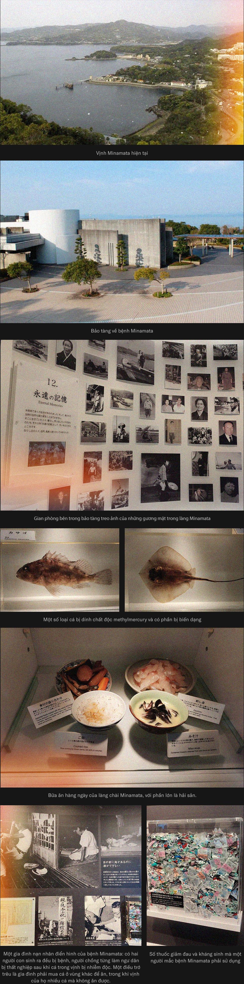 Minamata - căn bệnh từ thảm họa ngộ độc thủy ngân vô tiền khoáng hậu trên thế giới - Ảnh 16.