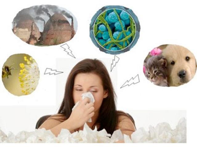 Viêm mũi dị ứng: Triệu chứng, yếu tố tăng nguy cơ và những người dễ bị viêm mũi dị ứng trong thời điểm giao mùa - Ảnh 2.