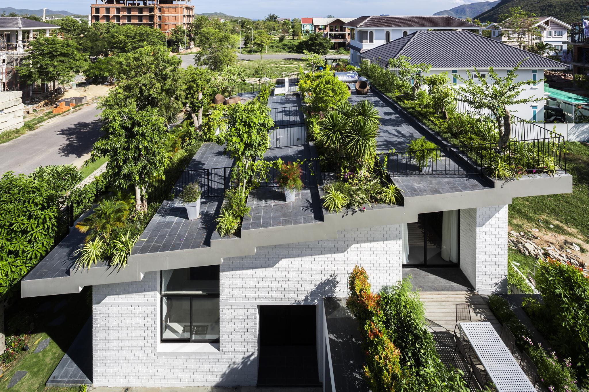 Học trồng rau sạch trên ban công chung cư cho không gian sống