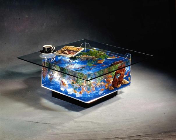 22 bể cá cảnh độc đáo, ấn tượng