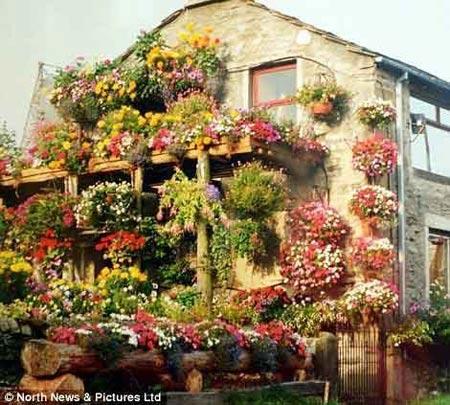 1208221345603127nhahoa6 Ngắm ngôi nhà thiết kế hoa tươi rói suốt 26 năm