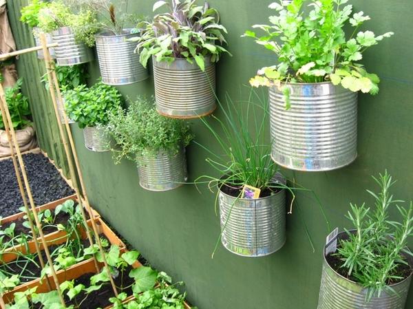 17082012rau1 9b184 thiết kế vườn rau đẹp xinh trong nhà phố