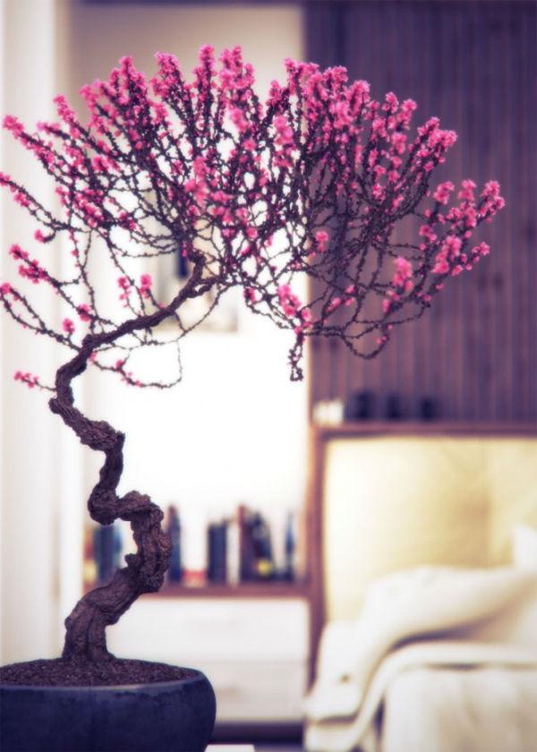 Bài trí bonsai cho không gian hiện đại
