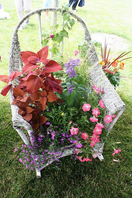 5ideastotransformoldchairsintobeautifulminigardens4 58efe 5 ý tưởng hô biến ghế cũ thành khu vườn mini