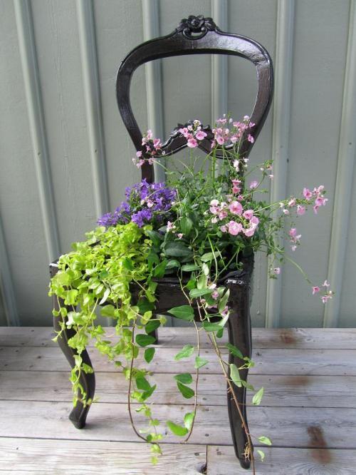 bild123 8e0fd 5 ý tưởng hô biến ghế cũ thành khu vườn mini