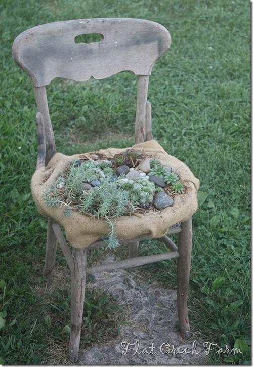 chair1thumb6 480c9 5 ý tưởng hô biến ghế cũ thành khu vườn mini