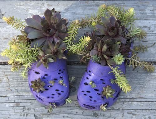 shoescontainergarden15 9b6af Có tới 1001 cách tận dụng giày cũ để trồng hoa trong vườn