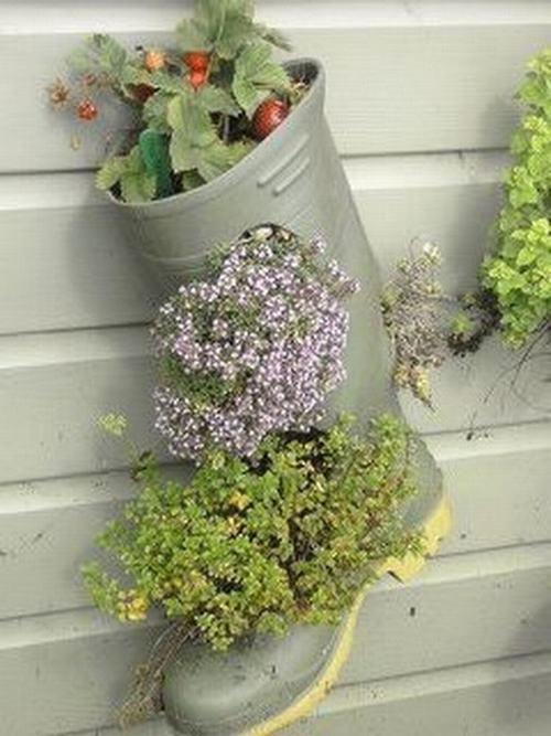 shoescontainergarden21 364d0 Có tới 1001 cách tận dụng giày cũ để trồng hoa trong vườn