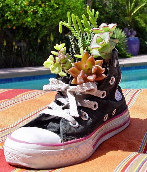 shoescontainergarden41 31e05 Có tới 1001 cách tận dụng giày cũ để trồng hoa trong vườn
