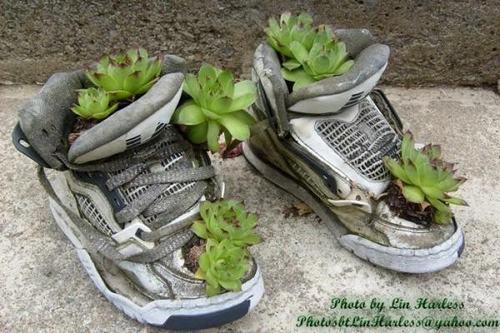 shoescontainergarden46 a61f5 Có tới 1001 cách tận dụng giày cũ để trồng hoa trong vườn