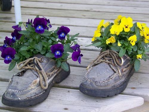 shoescontainergarden51 2bf9d Có tới 1001 cách tận dụng giày cũ để trồng hoa trong vườn