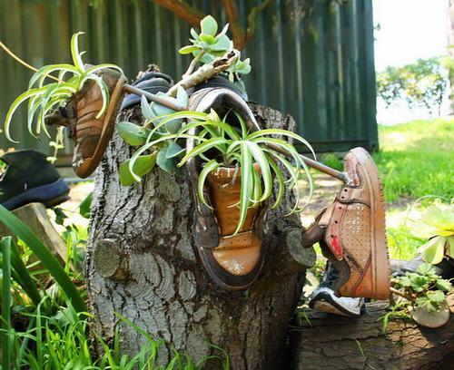 shoescontainergarden52 604fb Có tới 1001 cách tận dụng giày cũ để trồng hoa trong vườn