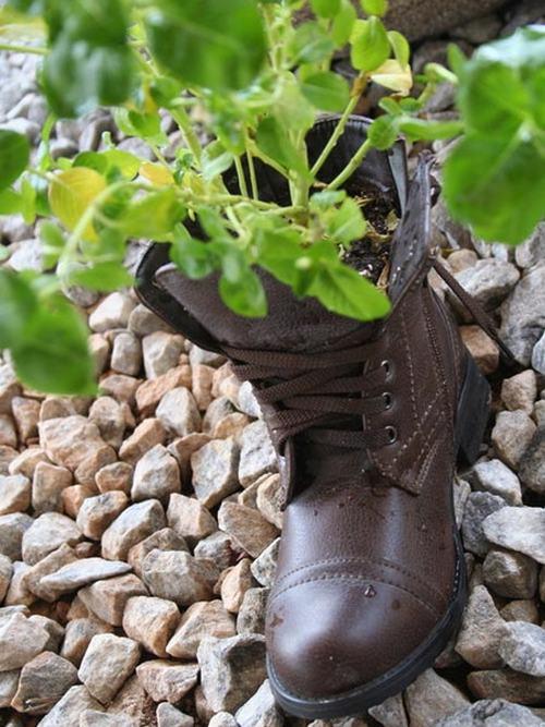 shoescontainergarden55 4520c Có tới 1001 cách tận dụng giày cũ để trồng hoa trong vườn