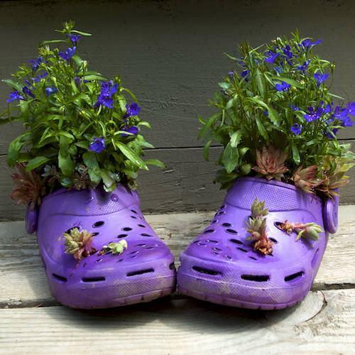 shoescontainergarden 176ce Có tới 1001 cách tận dụng giày cũ để trồng hoa trong vườn