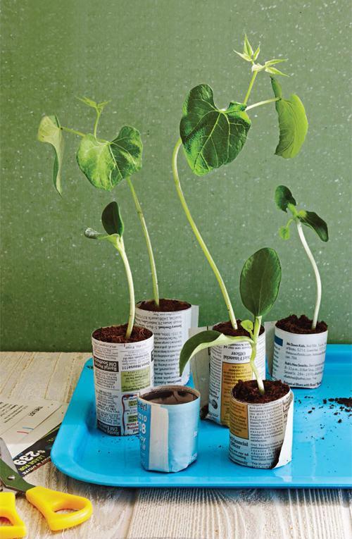 gocnhoxanhumcaycoi3 f06d6 Gợi ý những cách cực kì đơn giản để tạo khu vườn mini xinh xắn