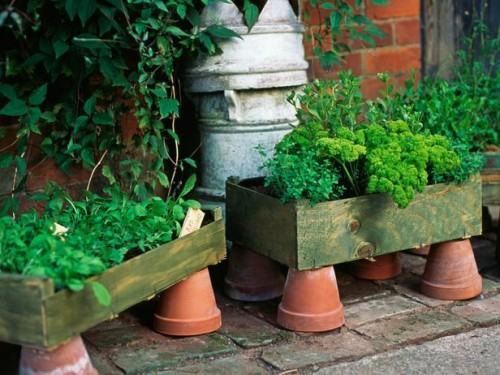 gocnhoxanhumcaycoi8 aebec Gợi ý những cách cực kì đơn giản để tạo khu vườn mini xinh xắn