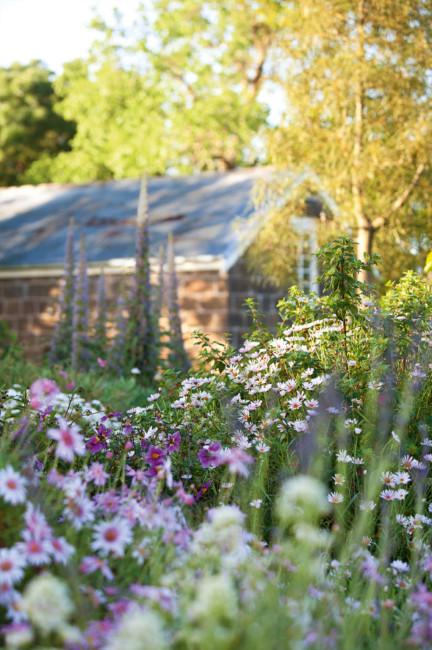 Ngắm ngôi nhà có khu vườn đầy nắng gió và hoa 6