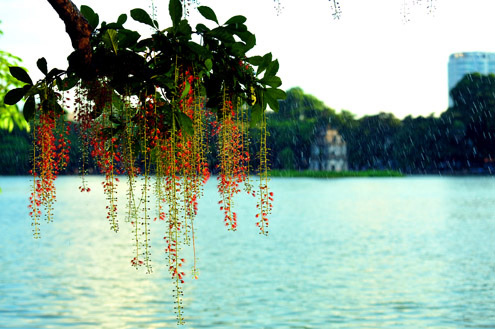 8 địa điểm chụp ảnh đẹp ở Hà Nội 17