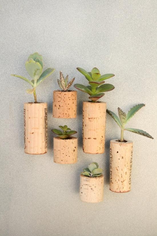 4 cách tạo khu vườn mini cho căn nhà của bạn 3