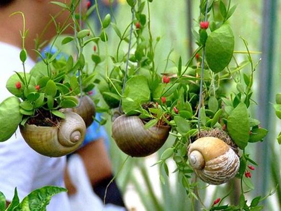 4 cách tạo khu vườn mini cho căn nhà của bạn 6