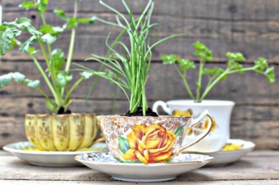 4 cách tạo khu vườn mini cho căn nhà của bạn 10
