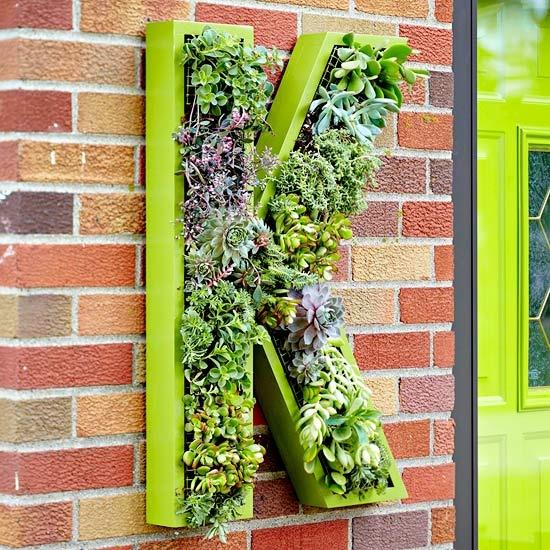 6 cách đơn giản trang trí nhà bằng cây cảnh 8