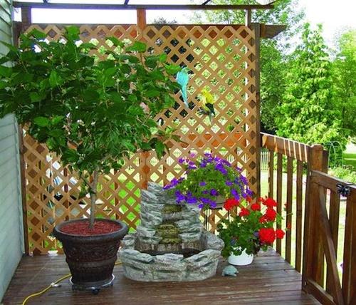 4 cách hay để sân vườn vừa mát vừa riêng tư 5