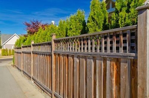 4 cách hay để sân vườn vừa mát vừa riêng tư 1