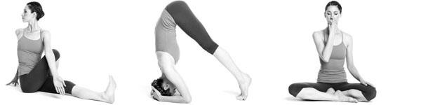 Bài tập yoga tốt nhất cho toàn bộ cơ thể bạn 7